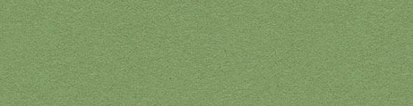 Linoleum Green